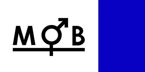 mob blå (1)